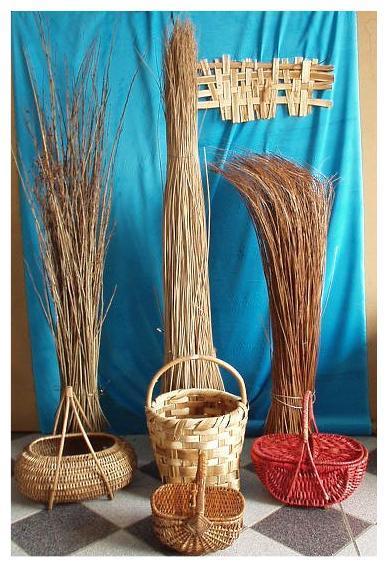 Materie prime intreccio cesti in vimini rattan giunco for Vendita bambu