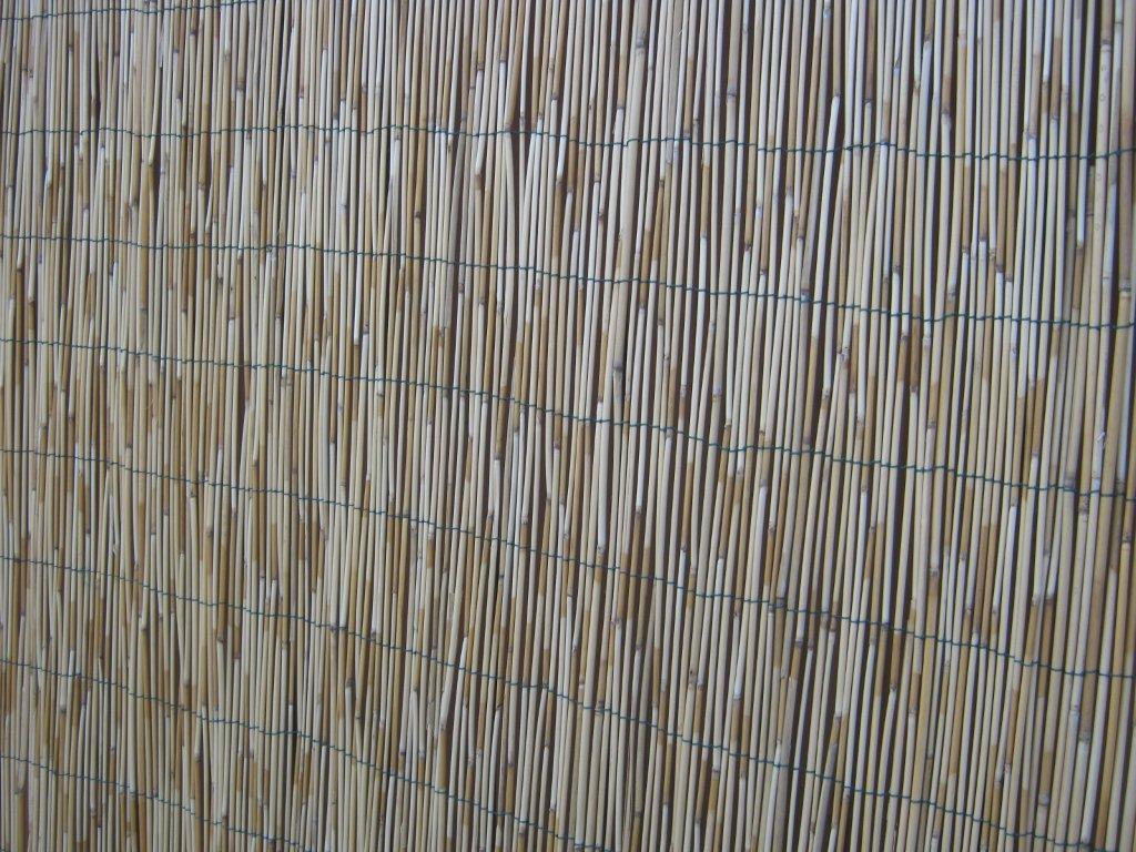 Tende in bamb per esterni perfect bamb in rotolo per for Vendita piante bambu gigante