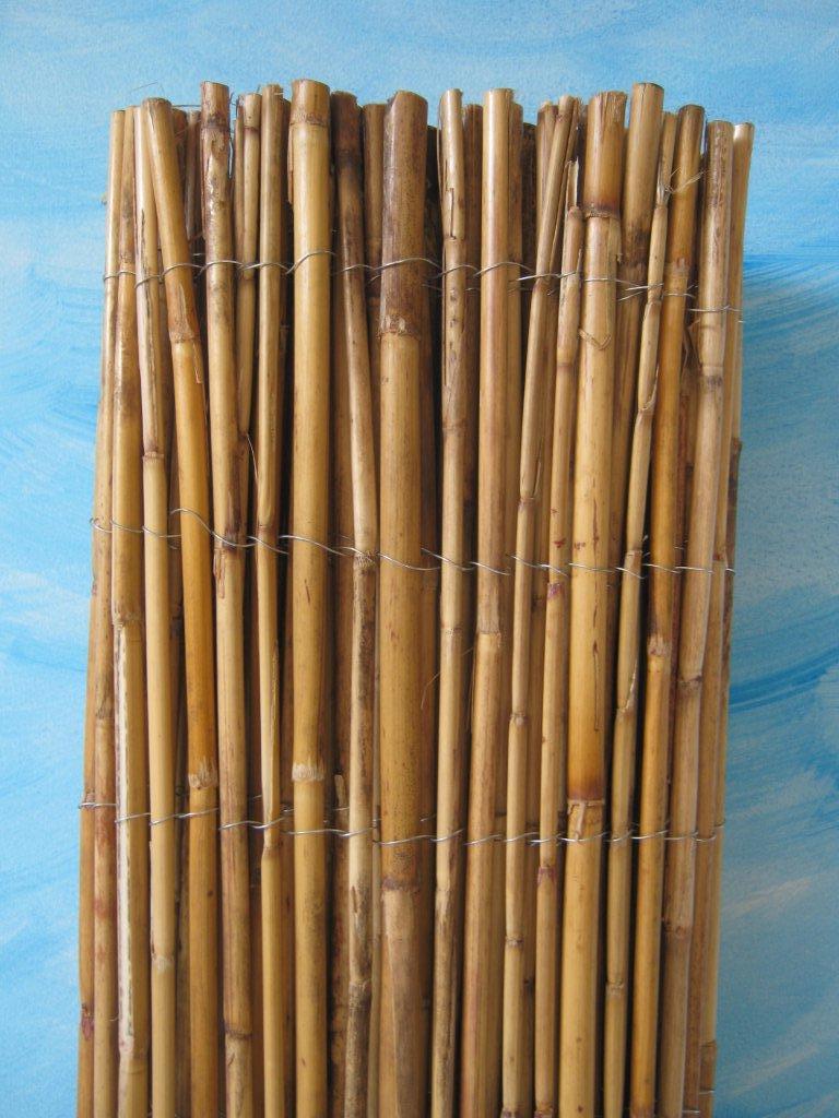 Arelle in bamb arelle di bambu canne di bamboo stuoie for Canne di bambu per pergolati